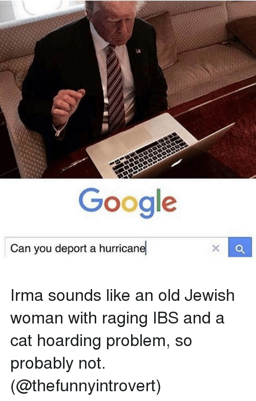 """hoarding: Google  -""""  Can you deport a hurricane Irma sounds like an old Jewish woman with raging IBS and a cat hoarding problem, so probably not. (@thefunnyintrovert)"""