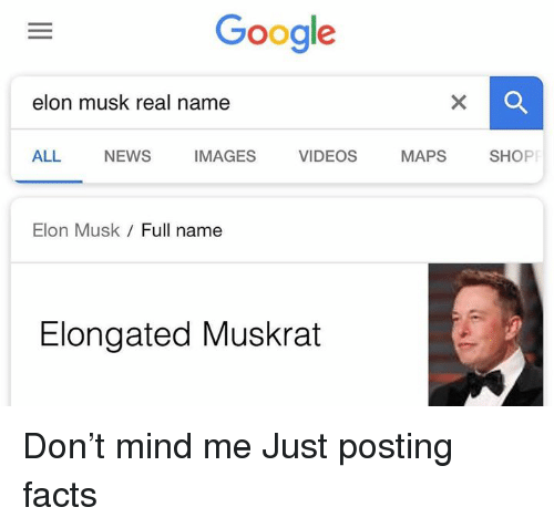 Facts, Google, and News: Google  elon musk real name  ALL NEWS IMAGES VIDEOS MAPS SHOP  Elon Musk  Full name  Elongated Muskrat Don't mind me  Just posting facts