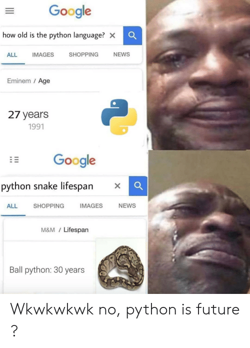 Eminem, Future, and Google: Google  how old is the python language? x  SHOPPING  NEWS  ALL  IMAGES  Eminem / Age  27 years  1991  Google  python snake lifespan  IMAGES  NEWS  SHOPPING  ALL  M&M/Lifespan  Ball python: 30 years Wkwkwkwk no, python is future ?