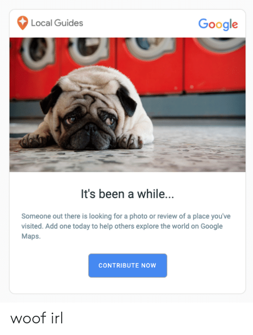 Google, Google Maps, and Help: Google  Local Guides  It's been a while...  Someone out there is looking for a photo or review of a place you've  visited. Add one today to help others explore the world on Google  Maps.  CONTRIBUTE NOw woof irl