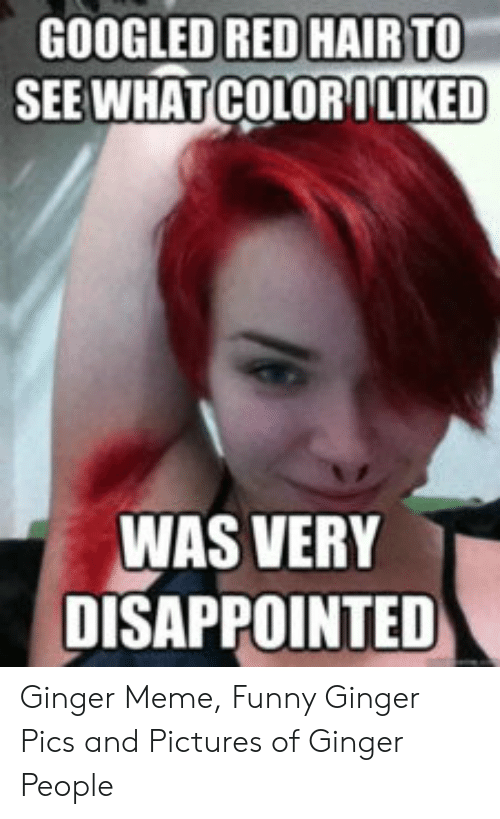 Ginger Pics: GOOGLED RED HAIR TO  SEE WHAT COLORILIKED  WAS VERY  DISAPPOINTED Ginger Meme, Funny Ginger Pics and Pictures of Ginger People
