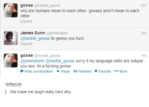 subpar: goose  hostile goose  5m  why are humans mean to each other. gooses aren't mean to each  other  Expand  James Dunn  omes dunn  3m  @hostile goose its geese you fuck  Expand  1m  goose @hostile goose  ajomesdunn @hostile goose sorry if my language skills are subpar.  you see, im a fucking goose  Hide conversation  Reply  ta Retweet Favorite  More  adisputa  this made me laugh really hard why