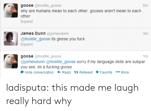 subpar: goose @hostile_goose  5m  why are humans mean to each other. gooses aren't mean to each  other  Expand  James Dunn @jomesdunn  @hostile_goose its geese you fuck  Expand  goose @hostile_goose  @jomesdunn @hostile_goose sorry if my language skills are subpar.  you see, im a fucking goose  Hide conversation Reply tỉ Retweet Favorite More ladisputa:  this made me laugh really hard why