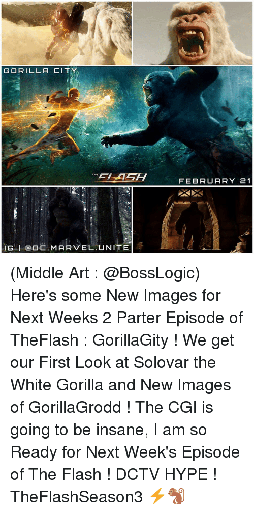 imags: GORILLA CITY  THE  IG I DC MARVEL. UNITE  FEBRUARY 21 (Middle Art : @BossLogic) Here's some New Images for Next Weeks 2 Parter Episode of TheFlash : GorillaGity ! We get our First Look at Solovar the White Gorilla and New Images of GorillaGrodd ! The CGI is going to be insane, I am so Ready for Next Week's Episode of The Flash ! DCTV HYPE ! TheFlashSeason3 ⚡️🐒