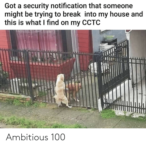 My House, Break, and House: Got a security notification that someone  might be trying to break into my house and  this is what I find on my CCTC  UOUC R ER Ambitious 100