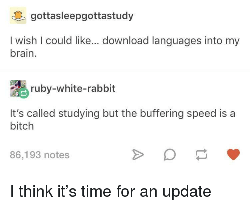 Bitch, Brain, and Rabbit: gottasleepgottastudy  I wish I could like... download languages into my  brain.  ruby-white-rabbit  It's called studying but the buffering speed is a  bitch  86,193 notes I think it's time for an update