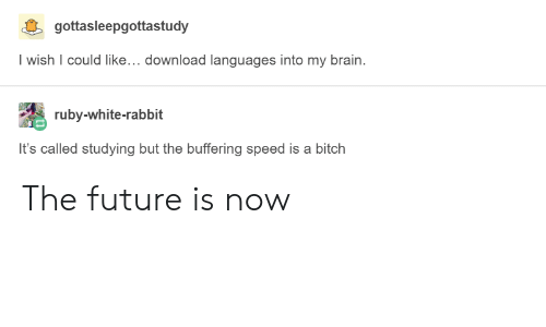 Bitch, Future, and Brain: gottasleepgottastudy  Iwish I could like... download languages into my brain.  ruby-white-rabbit  It's called studying but the buffering speed is a bitch The future is now