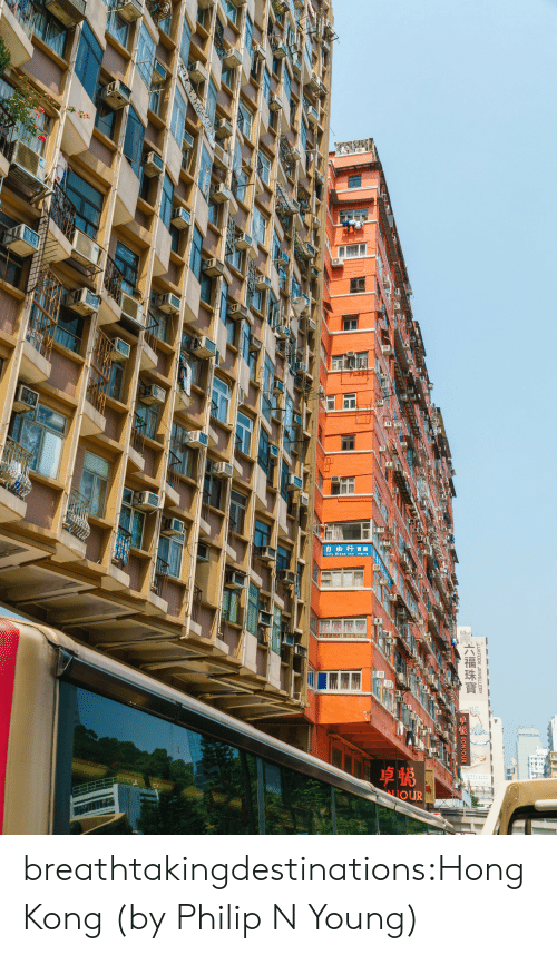 Tumblr, Blog, and Flickr: GOW  自由行實館  LIOUR  LUKEOOK JEWELLERY  六福珠寶 breathtakingdestinations:Hong Kong (byPhilip N Young)