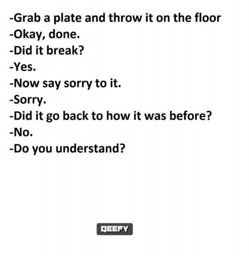 Throwes: -Grab a plate and throw it on the floor  Okay, done.  Did it break?  -Yes.  Now say sorry to it.  Sorry  -Did it go back to how it was before?  No.  Do you understand?  3EEFY