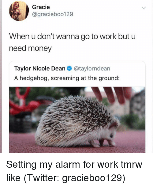 Hedgehog: Gracie  @graciebo0129  When u don't wanna go to work but u  need money  Taylor Nicole Dean@taylorndean  A hedgehog, screaming at the ground: Setting my alarm for work tmrw like (Twitter: gracieboo129)