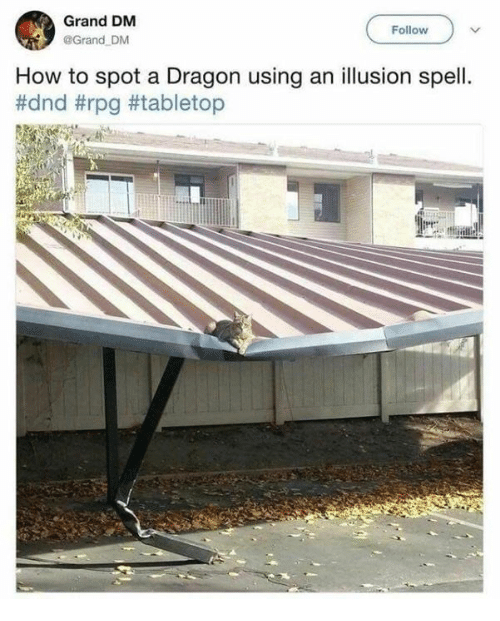 Memes, How To, and DnD: Grand DM  @Grand DM  Follow  How to spot a Dragon using an illusion spell.