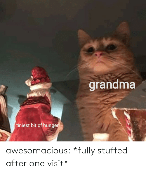 stuffed: grandma  tiniest bit of hunger awesomacious:  *fully stuffed after one visit*