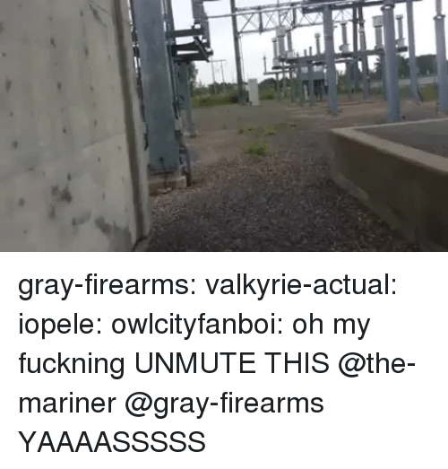 Tumblr, Blog, and Http: gray-firearms: valkyrie-actual:   iopele:  owlcityfanboi: oh my fuckning  UNMUTE THIS   @the-mariner @gray-firearms    YAAAASSSSS