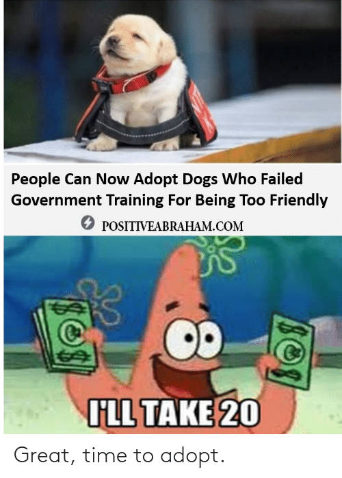 Adopt: Great, time to adopt.