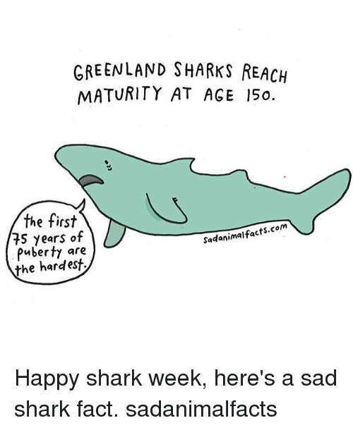 Memes, Shark, and Happy: GREENLAND SHARKS REACH  MATURITY AT AGE 15o.  the first  e tirs  75 years of  Puberty are  the hardest  Sadanimalfacts.com Happy shark week, here's a sad shark fact. sadanimalfacts