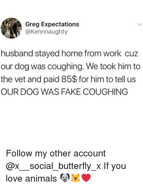 Love Animals: Greg Expectations  @Kennnaughty  husband stayed home from work cuz  our dog was coughing. We took him to  the vet and paid 85$ for him to tell us  OUR DOG WAS FAKE COUGHING Follow my other account @x__social_butterfly_x If you love animals 🐶🐱❤