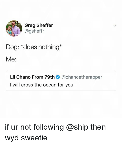 Wyd, Cross, and Ocean: Greg Sheffer  @gsheffr  Dog: *does nothing*  Me:  Lil Chano From 79th @chancetherapper  I will cross the ocean for you if ur not following @ship then wyd sweetie