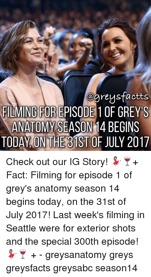 Memes, Grey's Anatomy, and Seattle: @greusfactts  FILMING FOR EPISODE 1OF GREYS  ANATOMY SEASON 1  4 BECINS  TODAY ON THEB1ST OF JULY 2017 Check out our IG Story! 💃🏻🍷+ Fact: Filming for episode 1 of grey's anatomy season 14 begins today, on the 31st of July 2017! Last week's filming in Seattle were for exterior shots and the special 300th episode! 💃🏻🍷 + - greysanatomy greys greysfacts greysabc season14