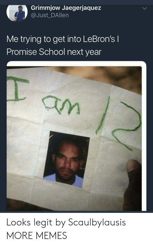 Dank, Memes, and School: Grimmjow Jaegerjaquez  @Just_DAllen  Me trying to get into LeBron's l  Promise School next year Looks legit by Scaulbylausis MORE MEMES