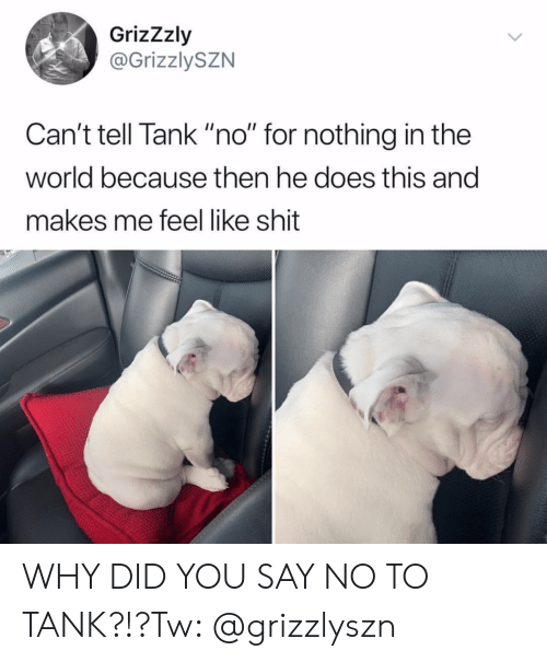 """Cant Tell: GrizZzly  @GrizzlySZN  Can't tell Tank """"no"""" for nothing in the  world because then he does this and  makes me feel like shit WHY DID YOU SAY NO TO TANK?!?Tw: @grizzlyszn"""