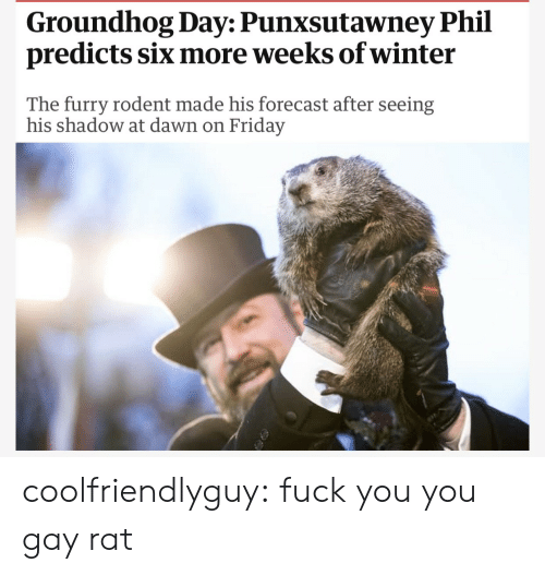 groundhog: Groundhog Day: Punxsutawney Phil  predicts six more weeks of winter  The furry rodent made his forecast after seeing  his shadow at dawn on Friday coolfriendlyguy: fuck you you gay rat