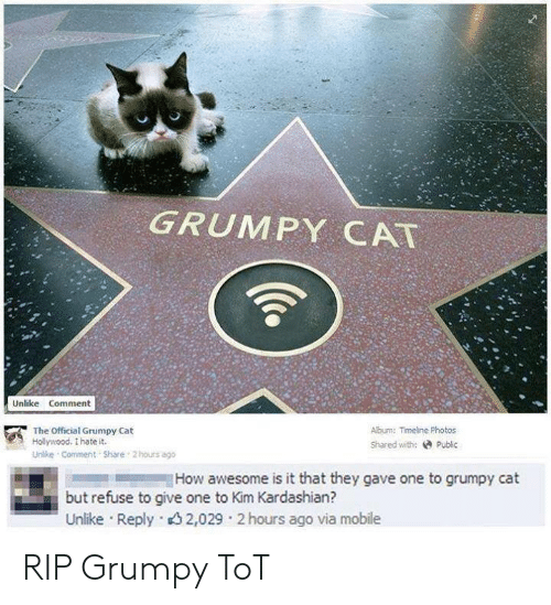 Official Grumpy: GRUMPY CAT  Unlike Comment  Abum: Timeline Photos  The Official Grumpy Cat  Holywood. I hate it.  Shared with: Public  Unlke Comment Share 2 hours ago  How awesome is it that they gave one to grumpy cat  but refuse to give one to Kim Kardashian?  Unlike Reply 32,029 2 hours ago via mobile RIP Grumpy ToT