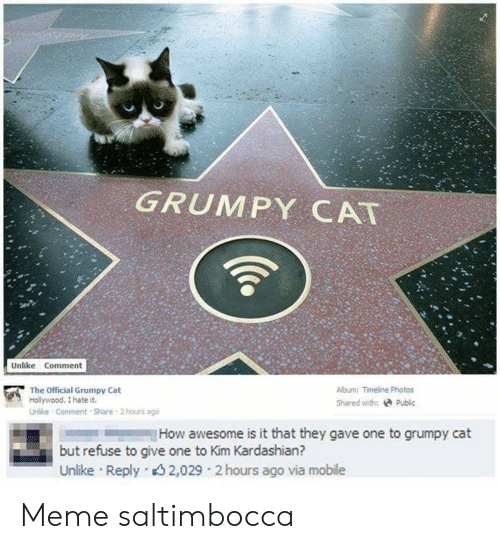 Official Grumpy: GRUMPY CAT  Unlike Comment  Album: Timeline Photos  The Official Grumpy Cat  Hollywood. I hate it.  Shared with:Public  Unlike Comment Share 2hours ago  How awesome is it that they gave one to grumpy cat  but refuse to give one to Kim Kardashian?  Unlike Reply 2,029 2 hours ago via mobile Meme saltimbocca