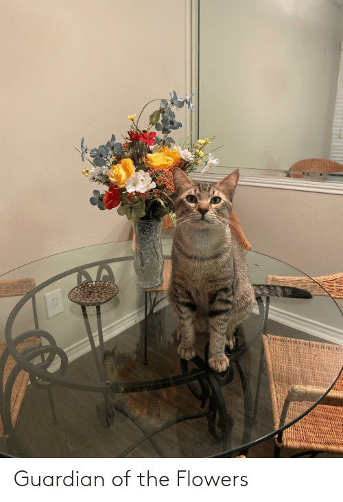 Flowers: Guardian of the Flowers