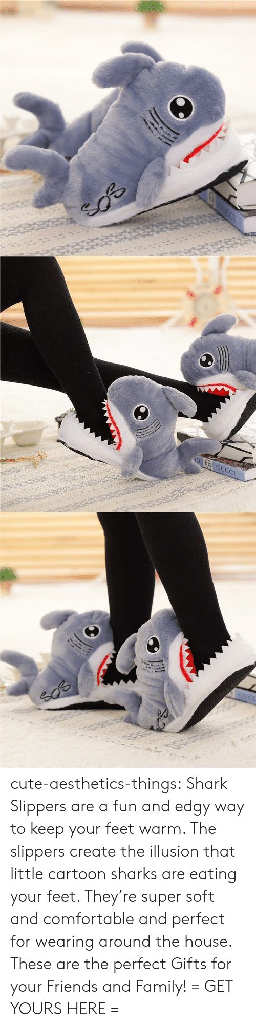 Comfortable, Cute, and Family: GUCCI cute-aesthetics-things: Shark Slippers are a fun and edgy way to keep your feet warm. The slippers create the illusion that little cartoon sharks are eating your feet. They're super soft and comfortable and perfect for wearing around the house. These are the perfect Gifts for your Friends and Family! = GET YOURS HERE =