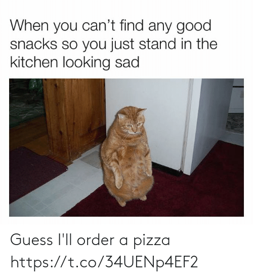 order: Guess I'll order a pizza https://t.co/34UENp4EF2