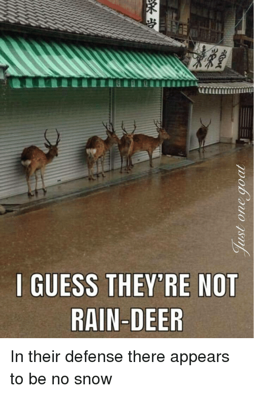 Deer, Guess, and Rain: GUESS THEY'RE NOT  RAIN-DEER In their defense there appears to be no snow