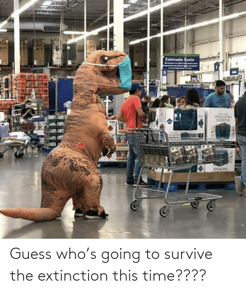Guess Who: Guess who's going to survive the extinction this time????