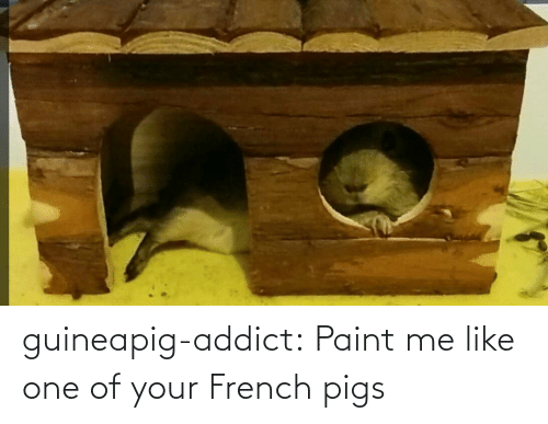 Paint Me Like One Of Your: guineapig-addict:  Paint me like one of your French pigs