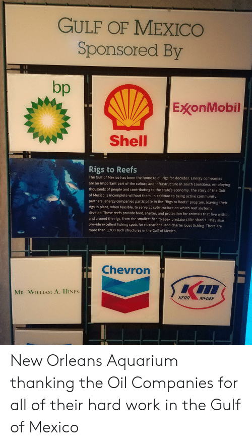 """Animals, Community, and Energy: GULF OF MEXICO  Sponsored By  bp  ExXonMobil  Shell  Rigs to Reefs  The Gulf of Mexico has been the home to oil rigs for decades. Energy companies  are an important part of the culture and infrastructure in south Louisiana, employing  thousands of people and contributing to the state's economy. The story of the Gulf  of Mexico is incomplete without them. In addition to being active community  partners, energy companies participate in the """"Rigs to Reefs"""" program, leaving their  rigs in place, when feasible, to serve as substructure on which reef systems  develop. These reefs provide food, shelter, and protection for animals that live within  and around the rigs, from the smallest fish to apex predators like sharks. They also  provide excellent fishing spots for recreational and charter boat fishing. There are  more than 3,700 SUch structures in the Gulf of Mexico.  Chevron  MR. WILLIAM A. HINES  KERR  MCGEE New Orleans Aquarium thanking the Oil Companies for all of their hard work in the Gulf of Mexico"""