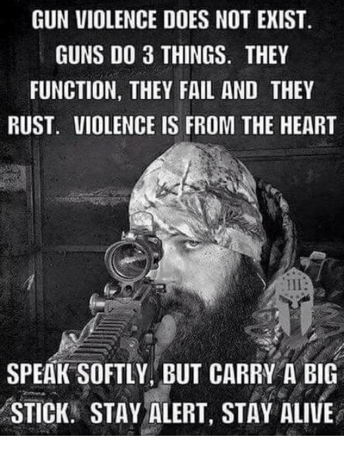 Alive, Fail, and Guns: GUN VIOLENCE DOES NOT EXIST  GUNS DO 3 THINGS. THEY  FUNCTION, THEY FAIL AND THEY  RUST. VIOLENCE IS FROM THE HEART  SPEAK SOFTLY, BUT CARRY A BIG  STICK. STAY ALERT, STAY ALIVE