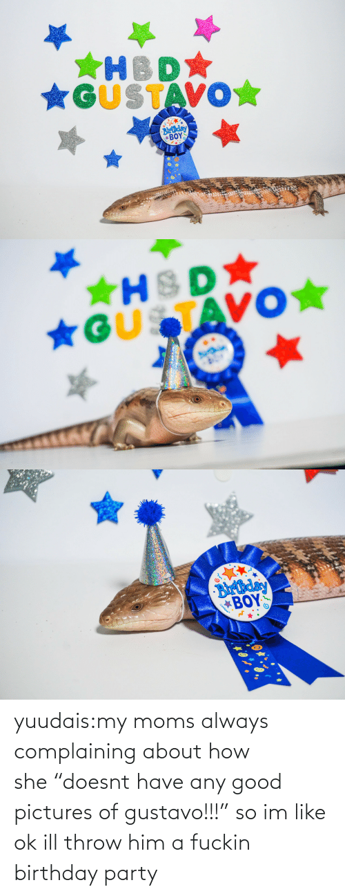 "Birthday: *GUSTAVO☆  Blrthday  ΒΟΥΣ   ★HSD  *GUSTAVO★   Barthday  BOY  Gunique yuudais:my moms always complaining about how she ""doesnt have any good pictures of gustavo!!!"" so im like ok ill throw him a fuckin birthday party"