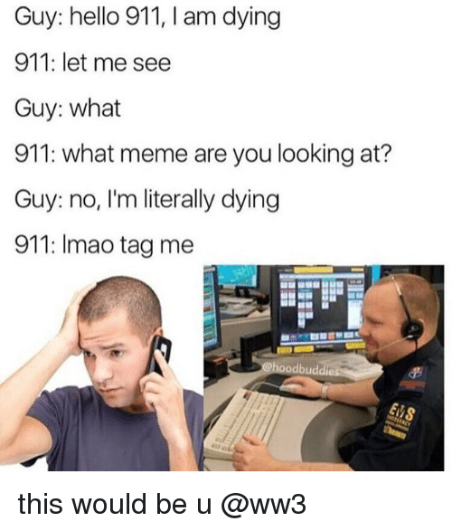 Hello, Meme, and Memes: Guy: hello 911, I am dying  911: let me see  Guy: what  911: what meme are you looking at?  Guy: no, I'm literally dying  911: Imao tag me this would be u @ww3