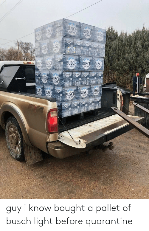 pallet: guy i know bought a pallet of busch light before quarantine