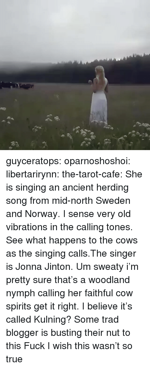 Singing, True, and Tumblr: guyceratops:  oparnoshoshoi:  libertarirynn:  the-tarot-cafe:    She is singing an ancient herding song from mid-north Sweden and Norway. I sense very old vibrations in the calling tones. See what happens to the cows as the singing calls.The singer is Jonna Jinton.    Um sweaty i'm pretty sure that's a woodland nymph calling her faithful cow spirits get it right.   I believe it's called Kulning?  Some trad blogger is busting their nut to this  Fuck I wish this wasn't so true