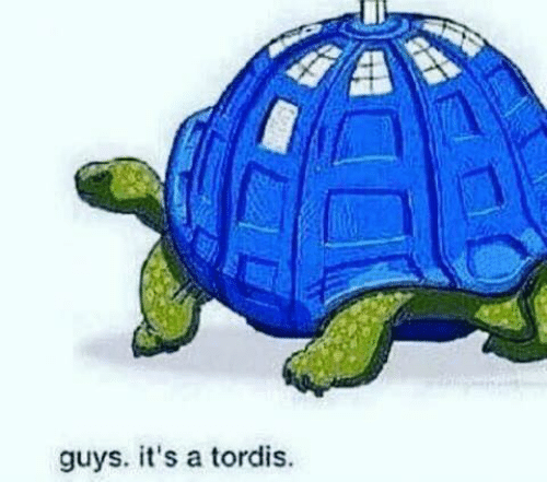 Memes, 🤖, and Guys: guys. it's a tordis.