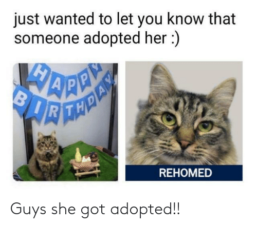 Adopted: Guys she got adopted!!