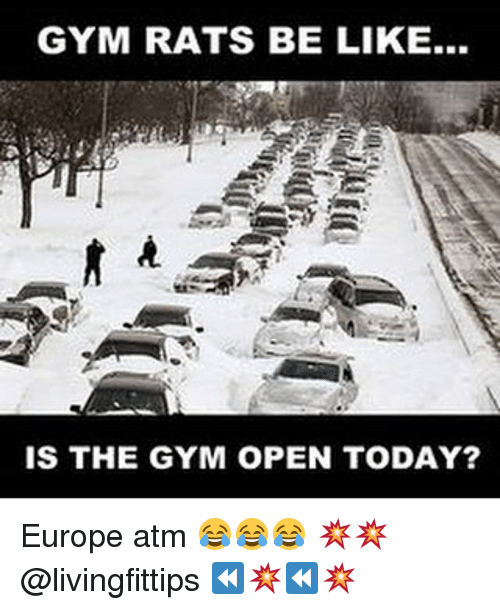 Be Like, Gym, and Europe: GYM RATS BE LIKE...  IS THE GYM OPEN TODAY? Europe atm 😂😂😂 💥💥 @livingfittips ⏪💥⏪💥
