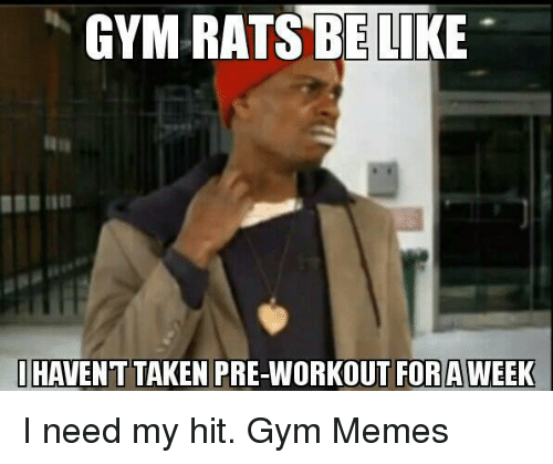 gym memes: GYM RATS ELI  I HAVENT TAKEN PRE-WORKOUT FOR AWEEK I need my hit.  Gym Memes