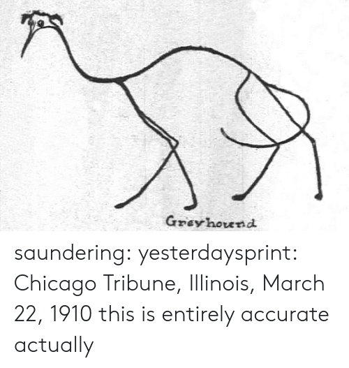 Chicago, Target, and Tumblr: Gzey hound saundering: yesterdaysprint:   Chicago Tribune, Illinois, March 22, 1910  this is entirely accurate actually
