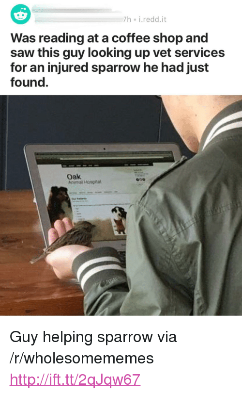"Saw, Animal, and Coffee: h i.redd.it  Was reading at a coffee shop and  saw this guy looking up vet services  for an injured sparrow he had just  found.  Oak  Animal Hospinal  009 <p>Guy helping sparrow via /r/wholesomememes <a href=""http://ift.tt/2qJqw67"">http://ift.tt/2qJqw67</a></p>"