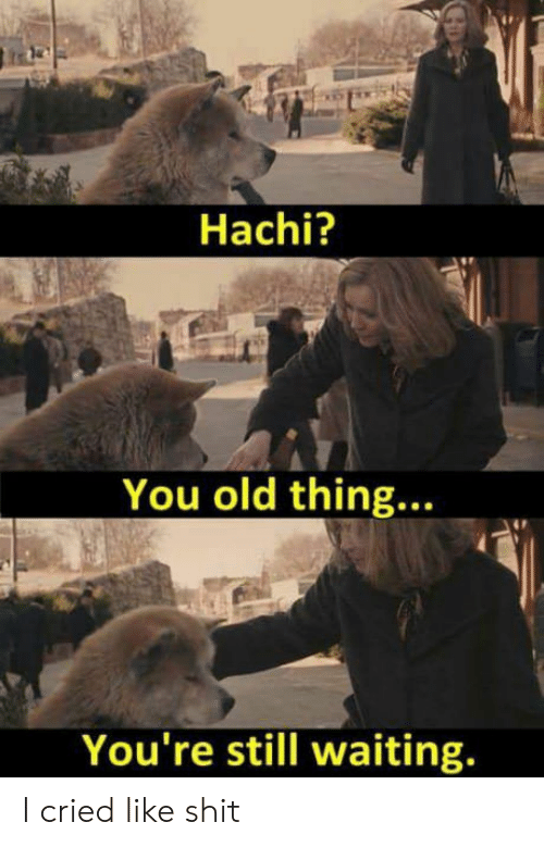 hachi: Hachi?  You old thing...  You're still waiting. I cried like shit