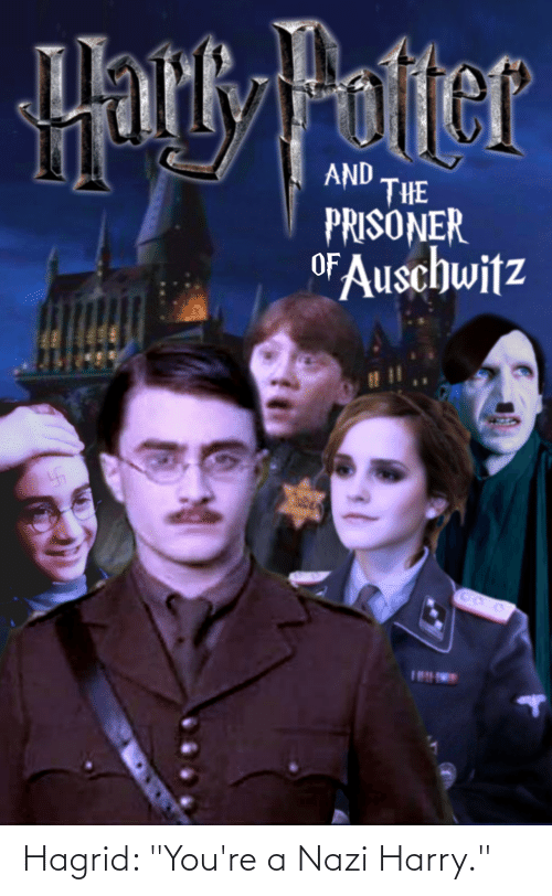 """Youre A: Hagrid: """"You're a Nazi Harry."""""""