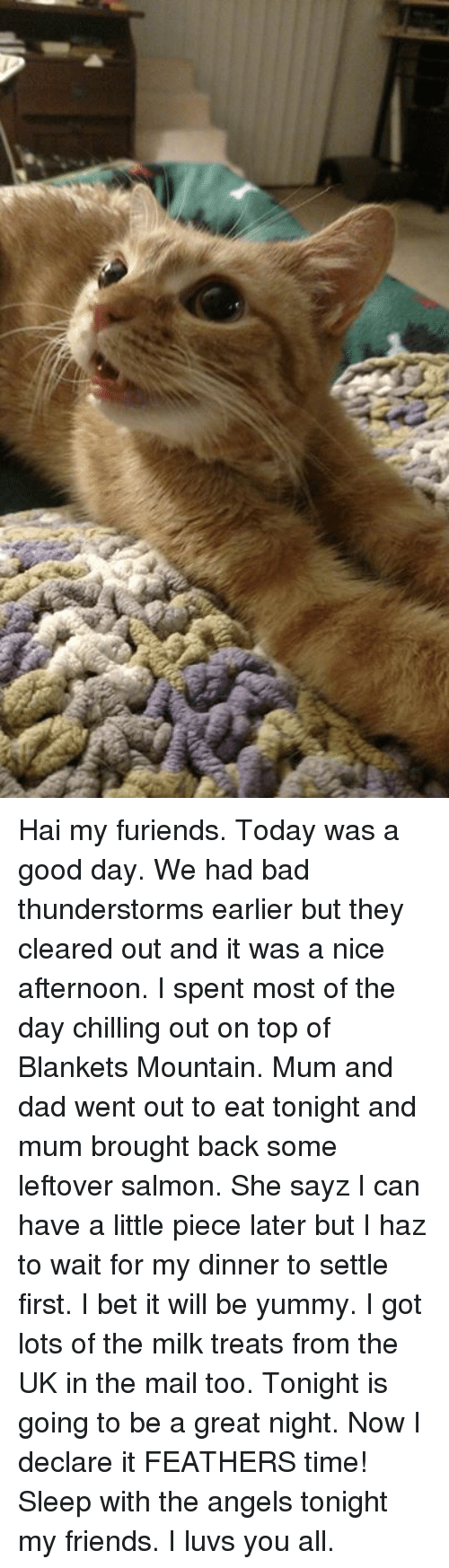 Thunderstorming: Hai my furiends. Today was a good day. We had bad thunderstorms earlier but they cleared out and it was a nice afternoon. I spent most of the day chilling out on top of Blankets Mountain. Mum and dad went out to eat tonight and mum brought back some leftover salmon. She sayz I can have a little piece later but I haz to wait for my dinner to settle first. I bet it will be yummy. I got lots of the milk treats from the UK in the mail too. Tonight is going to be a great night. Now I declare it FEATHERS time! Sleep with the angels tonight my friends. I luvs you all.