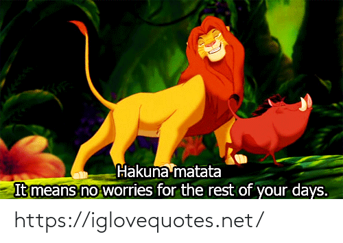 The Rest: Hakuna matata  It means no worries for the rest of your days. https://iglovequotes.net/