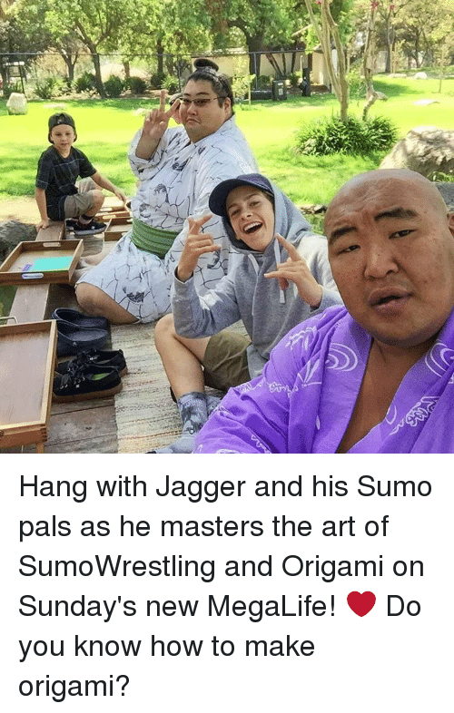 sumo: Hang with Jagger and his Sumo pals as he masters the art of SumoWrestling and Origami on Sunday's new MegaLife! ❤️ Do you know how to make origami?